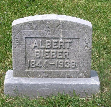BIEBER, ALBERT - Lucas County, Ohio | ALBERT BIEBER - Ohio Gravestone Photos
