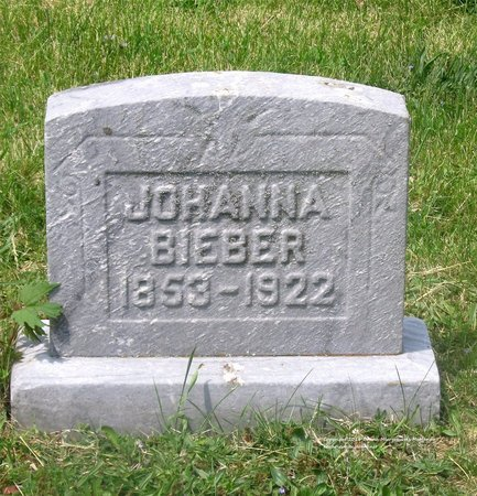 BIEBER, JOHANNA - Lucas County, Ohio   JOHANNA BIEBER - Ohio Gravestone Photos