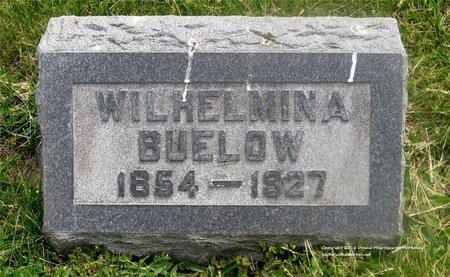 SEEMAN BUELOW, WILHELMINA - Lucas County, Ohio | WILHELMINA SEEMAN BUELOW - Ohio Gravestone Photos
