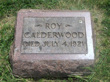 CALDERWOOD, ROY - Lucas County, Ohio | ROY CALDERWOOD - Ohio Gravestone Photos
