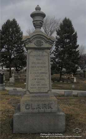 DODGE CLARK, ALICE E. - Lucas County, Ohio | ALICE E. DODGE CLARK - Ohio Gravestone Photos