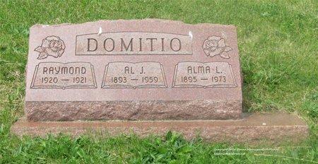 DOMITIO, ALMA L. - Lucas County, Ohio | ALMA L. DOMITIO - Ohio Gravestone Photos