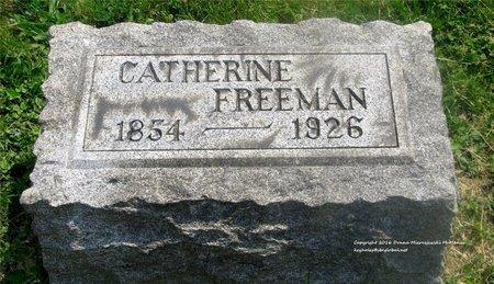 FREEMAN, CATHERINE - Lucas County, Ohio | CATHERINE FREEMAN - Ohio Gravestone Photos