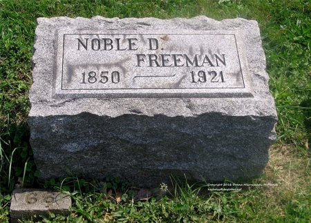 FREEMAN, NOBLE D. - Lucas County, Ohio | NOBLE D. FREEMAN - Ohio Gravestone Photos