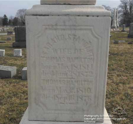 HAMILTON, THOMAS - Lucas County, Ohio | THOMAS HAMILTON - Ohio Gravestone Photos