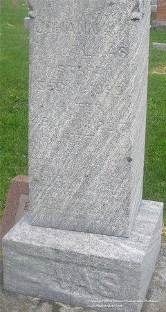 LAAS, JOHANN - Lucas County, Ohio | JOHANN LAAS - Ohio Gravestone Photos