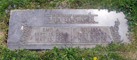 MUSCH, MELISSA - Lucas County, Ohio | MELISSA MUSCH - Ohio Gravestone Photos