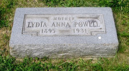 SCHAFER POWELL, LYDIA ANN - Lucas County, Ohio | LYDIA ANN SCHAFER POWELL - Ohio Gravestone Photos