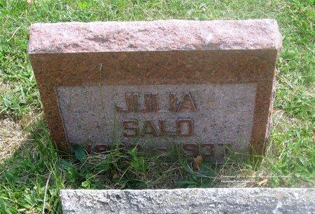 SALO, JULIA - Lucas County, Ohio   JULIA SALO - Ohio Gravestone Photos