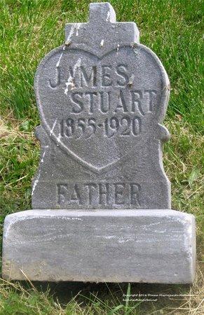 STUART, JAMES - Lucas County, Ohio | JAMES STUART - Ohio Gravestone Photos