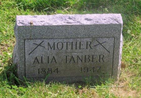 TANBER, ALIA - Lucas County, Ohio | ALIA TANBER - Ohio Gravestone Photos