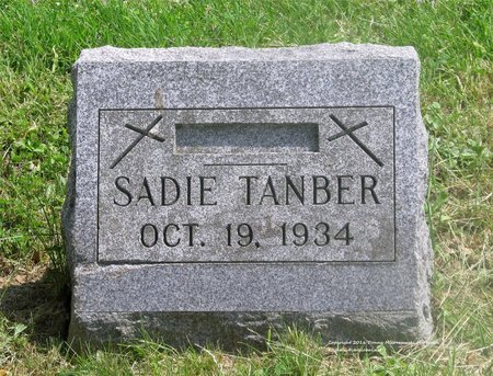 TANBER, SADIE - Lucas County, Ohio | SADIE TANBER - Ohio Gravestone Photos