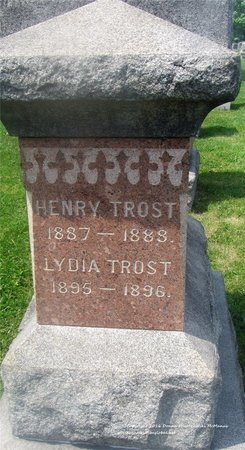TROST, LYDIA - Lucas County, Ohio | LYDIA TROST - Ohio Gravestone Photos