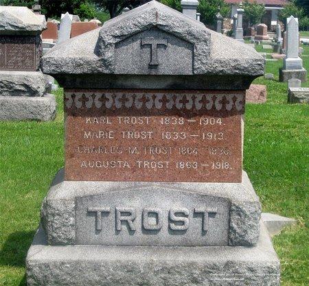 TROST, CHARLES M. - Lucas County, Ohio | CHARLES M. TROST - Ohio Gravestone Photos