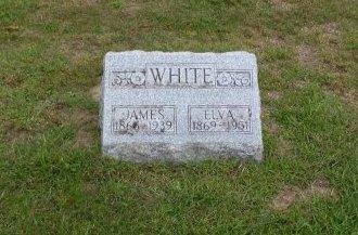 WHITE, JAMES A. - Lucas County, Ohio | JAMES A. WHITE - Ohio Gravestone Photos