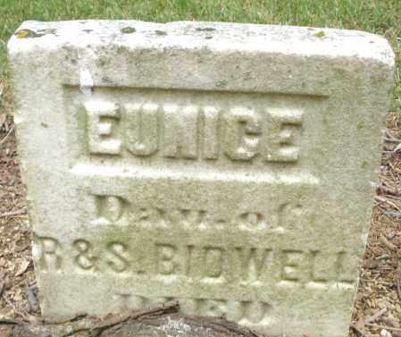 BIDWELL, EUNICE - Madison County, Ohio | EUNICE BIDWELL - Ohio Gravestone Photos