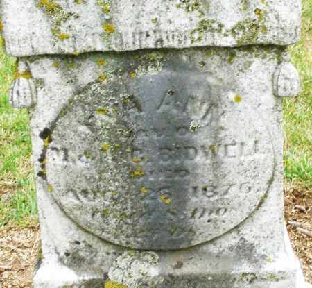 BIDWELL, EVA ANN - Madison County, Ohio | EVA ANN BIDWELL - Ohio Gravestone Photos