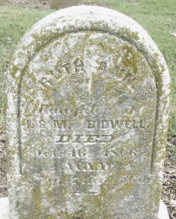 BIDWELL, RUTH ANN - Madison County, Ohio   RUTH ANN BIDWELL - Ohio Gravestone Photos
