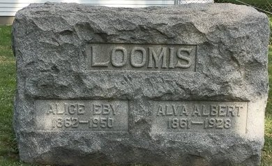 LOOMIS, ALVA ALBERT - Mahoning County, Ohio | ALVA ALBERT LOOMIS - Ohio Gravestone Photos