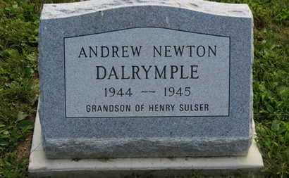 SULSER, HENRY - Marion County, Ohio   HENRY SULSER - Ohio Gravestone Photos