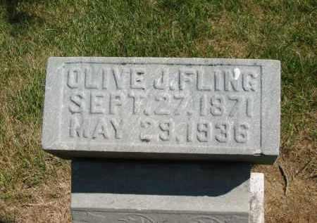 FLING, OLIVE J. - Marion County, Ohio | OLIVE J. FLING - Ohio Gravestone Photos