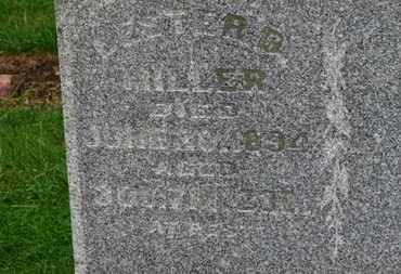 MILLER, LESTER D. - Marion County, Ohio   LESTER D. MILLER - Ohio Gravestone Photos