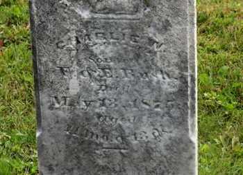 ROESCH, CHARLIE W. - Marion County, Ohio | CHARLIE W. ROESCH - Ohio Gravestone Photos