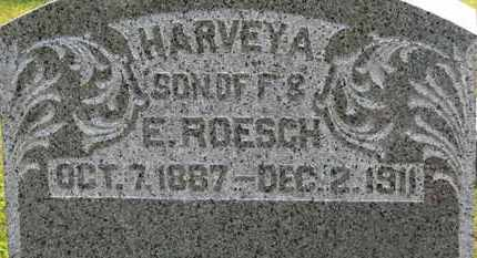 ROESCH, F. - Marion County, Ohio | F. ROESCH - Ohio Gravestone Photos