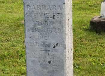 STEINHELFER, BARBARA - Marion County, Ohio | BARBARA STEINHELFER - Ohio Gravestone Photos