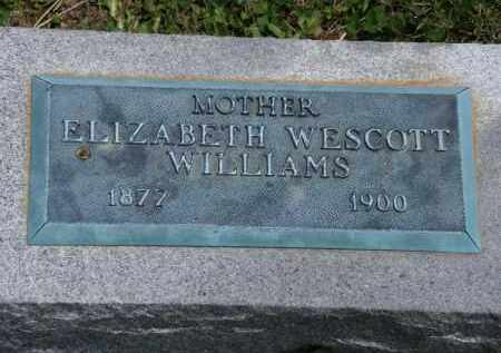WILLIAMS, ELIZABETH - Marion County, Ohio | ELIZABETH WILLIAMS - Ohio Gravestone Photos
