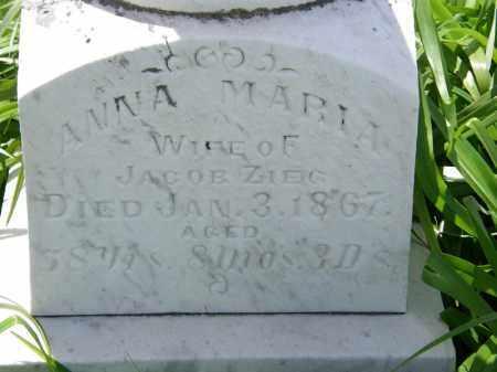 ZIEG, JACOB - Marion County, Ohio | JACOB ZIEG - Ohio Gravestone Photos