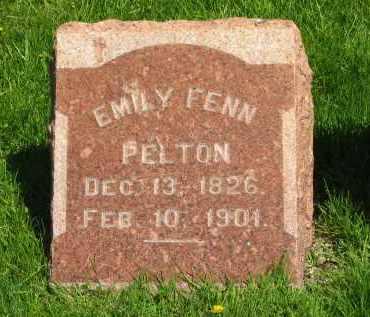 FENN PELTON, EMILY - Medina County, Ohio | EMILY FENN PELTON - Ohio Gravestone Photos