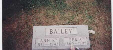 BAILEY, SEBIA - Meigs County, Ohio   SEBIA BAILEY - Ohio Gravestone Photos