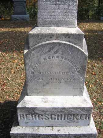 BERGSCHICKER, KATIE - Meigs County, Ohio   KATIE BERGSCHICKER - Ohio Gravestone Photos