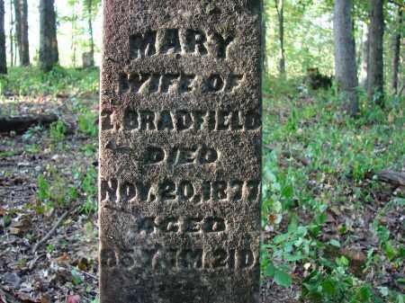 BRADFIELD, MARY - Meigs County, Ohio | MARY BRADFIELD - Ohio Gravestone Photos
