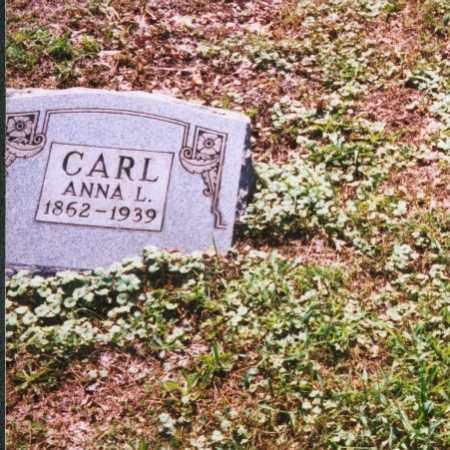 CARL, ANNA L. - Meigs County, Ohio   ANNA L. CARL - Ohio Gravestone Photos