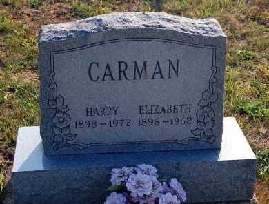 CARMAN, ELIZABETH - Meigs County, Ohio | ELIZABETH CARMAN - Ohio Gravestone Photos