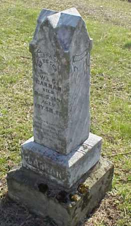 CARMAN, IDA REBECCA - Meigs County, Ohio   IDA REBECCA CARMAN - Ohio Gravestone Photos