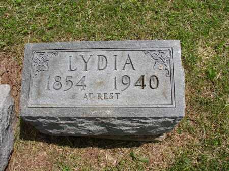 CARMAN, LYDIA - Meigs County, Ohio | LYDIA CARMAN - Ohio Gravestone Photos