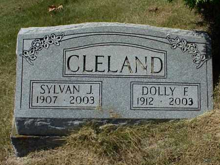 CLELAND, SYLVAN J. - Meigs County, Ohio | SYLVAN J. CLELAND - Ohio Gravestone Photos