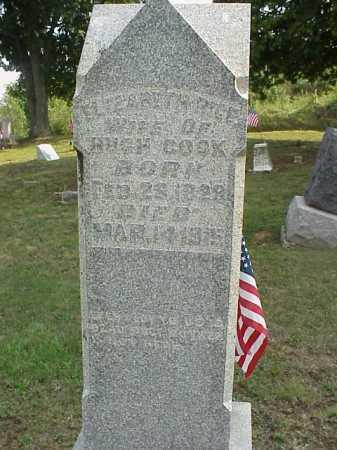 RICE COOK, ELIZABETH - Meigs County, Ohio | ELIZABETH RICE COOK - Ohio Gravestone Photos