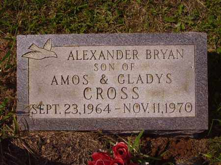 CROSS, ALEXANDER BRYAN - Meigs County, Ohio | ALEXANDER BRYAN CROSS - Ohio Gravestone Photos