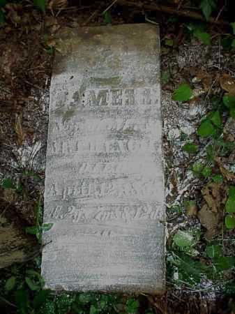 FRENCH, JAMES S. - Meigs County, Ohio | JAMES S. FRENCH - Ohio Gravestone Photos