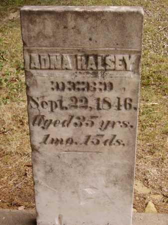 HALSEY, ADNA - Meigs County, Ohio | ADNA HALSEY - Ohio Gravestone Photos