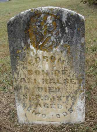HALSEY, EDSON - Meigs County, Ohio   EDSON HALSEY - Ohio Gravestone Photos