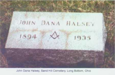 HALSEY, JOHN DANA - Meigs County, Ohio | JOHN DANA HALSEY - Ohio Gravestone Photos