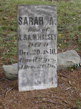 HALSEY, SARAH A. - Meigs County, Ohio   SARAH A. HALSEY - Ohio Gravestone Photos