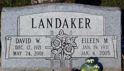 LANDAKER, DAVID W. - Meigs County, Ohio | DAVID W. LANDAKER - Ohio Gravestone Photos