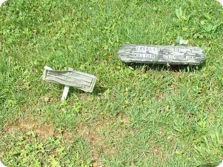 LEE, WALTER JR. - Meigs County, Ohio | WALTER JR. LEE - Ohio Gravestone Photos