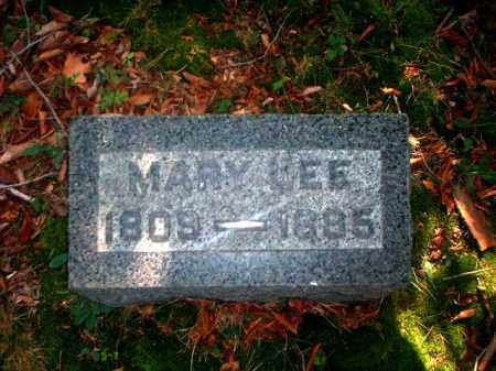 LEE, MARY - Meigs County, Ohio   MARY LEE - Ohio Gravestone Photos